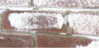 Fasadearbeid ved saltutslag